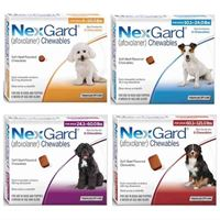 NexGard Chewable Tick & Flea Tablet