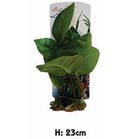 Plastic Aquarium Plant - PP6412