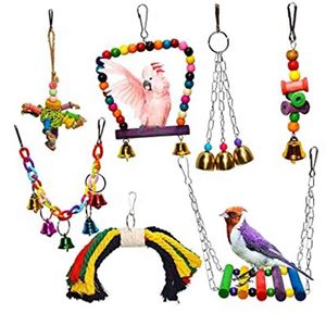 Picture for category Bird Toys