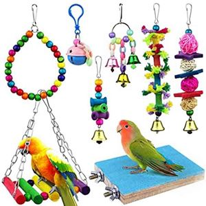 Picture for category Parakeet Toys