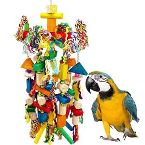Picture for category Parrot Toys